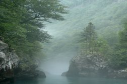 Nebel im Tara Canyon
