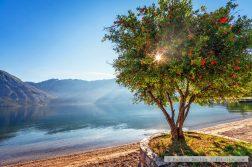 Morgenstille in der Bucht von Kotor