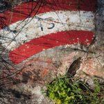geführte Wanderreise Triest Wanderwegmarkierung im Karst oberhalb von Triest