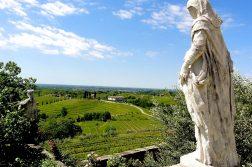 Blick auf das Weingebiet Collio
