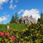 geführte Wanderreise Dolomiten Blütenpracht bei der Pause