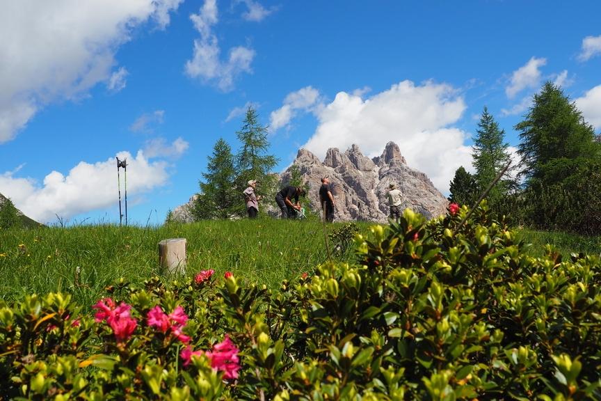Farbenpracht In Den Dolomiten
