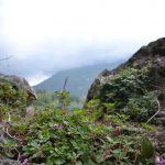 Stillleben am Lago di Cavedine