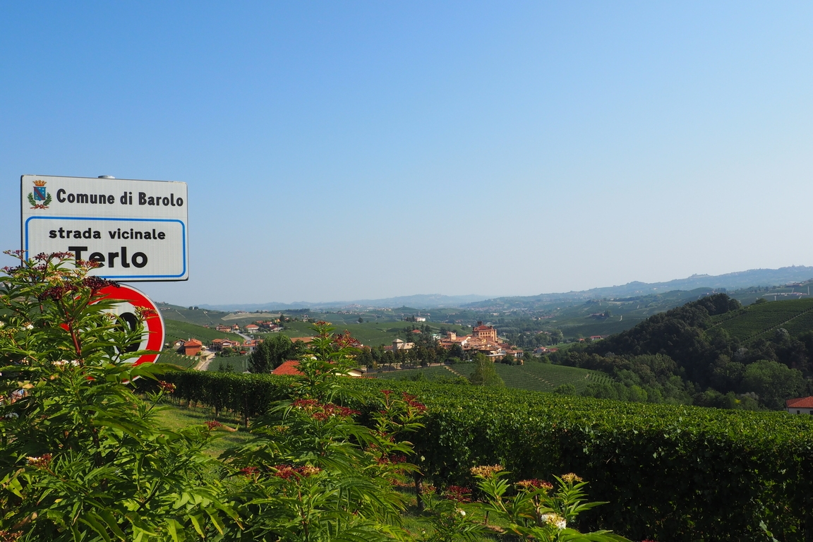 Blick Auf Die Hügel Von Barolo