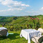Blick von der Restaurant Terrasse auf die Weinberge
