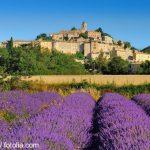 geführte Wanderreise Provence Lavendelfelder und Blick auf die Stadt Aups