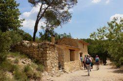 unsere Wandergruppe unterwegs in der Provence