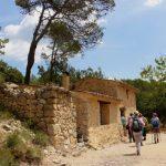 geführte Wanderreise Provence Wanderer unterwegs
