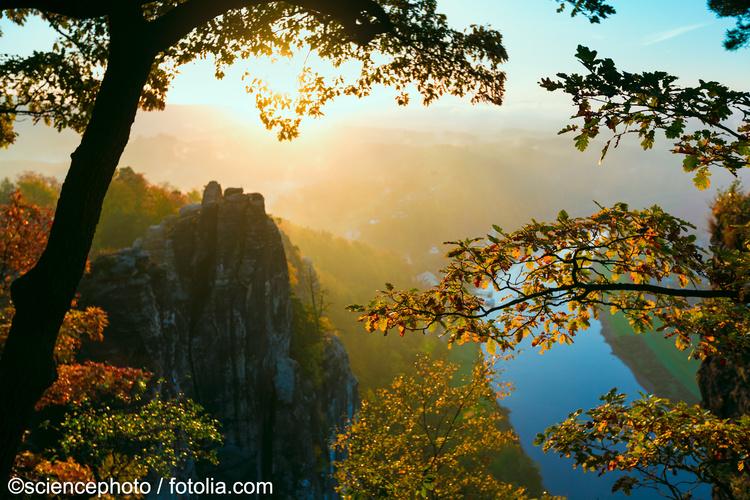 Blick Von Der Bastei Auf Der Wanderreise Elbsandsteingebirge