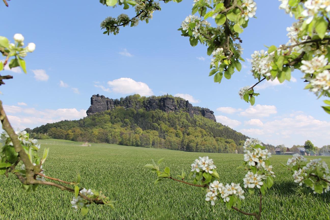 Frühling Am Lilienstein Auf Der Wanderreise Sächsische Schweiz