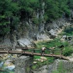 Wanderreise Montenegro Brücke im Mrtvica Canyon Montenegro