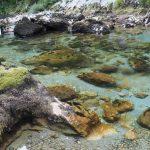 kristallklares Wasser im Mrtvica Canyon in Montenegro