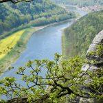 Blick auf die Elbe und Kurort Rathen
