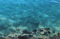 geführte Wanderreise Kanaren türkisblaues Meer