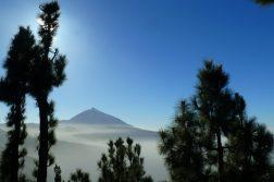 geführte Wanderreise Kanaren Teide im Nebel