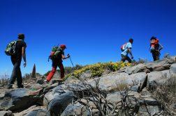 geführte Wanderreise Kanaren Wanderer auf Teneriffa