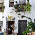 Shop in Frigiliana
