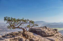 geführte Wanderreise Sächsische Schweiz Blick vom Lilienstein