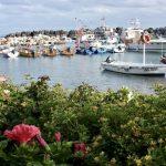 kleine Boote im kleinen Hafen Casamicciola Ischia