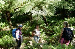 geführte Wanderreise Portugal 3 Damen im Park
