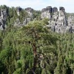 geführte Wanderreise Sächsische Schweiz Affenstein