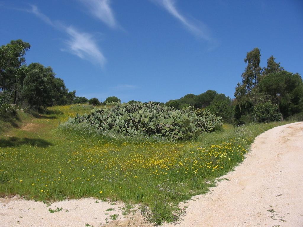 geführte Wanderreise Sardinien Sandweg
