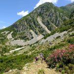 Wanderreise Albanien Wanderer auf dem Weg mit Oleanderbüschen im Hinterland